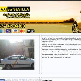 página web Para un Taxi de Sevilla - DGsys